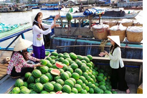 Tour du lịch Hà Nội – Phú Quốc – Miền Tây – Sài Gòn 7 ngày 6 đêm