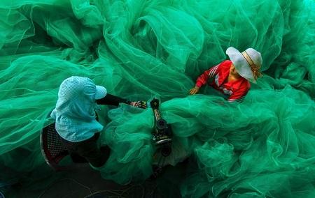 Ngắm 5 bức ảnh của Việt Nam đang tranh giải với thế giới